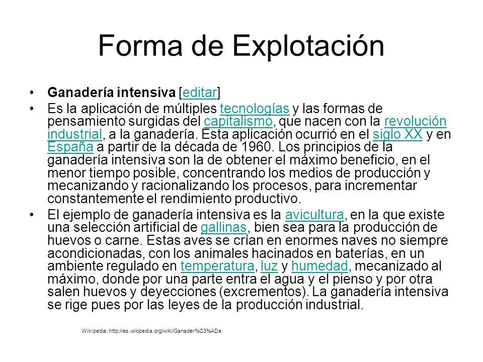 Forma de Explotación Ganadería intensiva [editar]